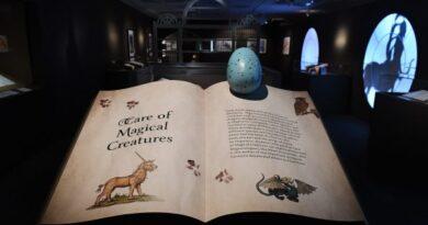02 'Harry Potter una historia de Magia' Así puedes visitar la exposición desde tu celular