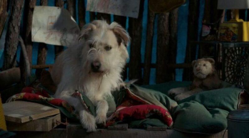 02 Stranger Things Finalmente que paso con Chester la mascota de Will Byers