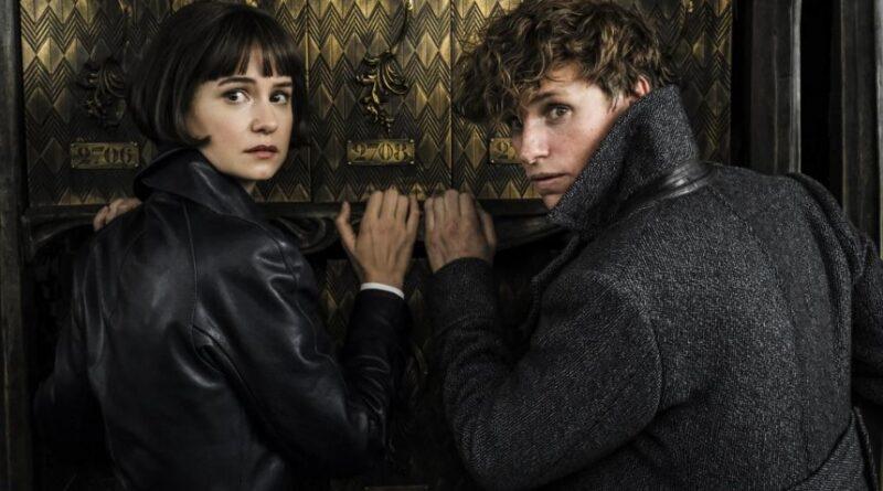 'Animales Fantásticos Los Crímenes de Grindelwald' tendrá más romance que la primera parte