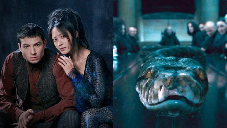03 Los detalles que revelo J.K. Rowling sobre Animales Fantasticos Los Crimenes de Grindelwald
